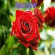 Consultatie met helderziende Naomie uit Nederland